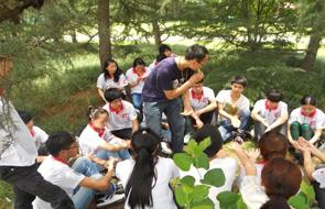 学生就业能力拓展训练